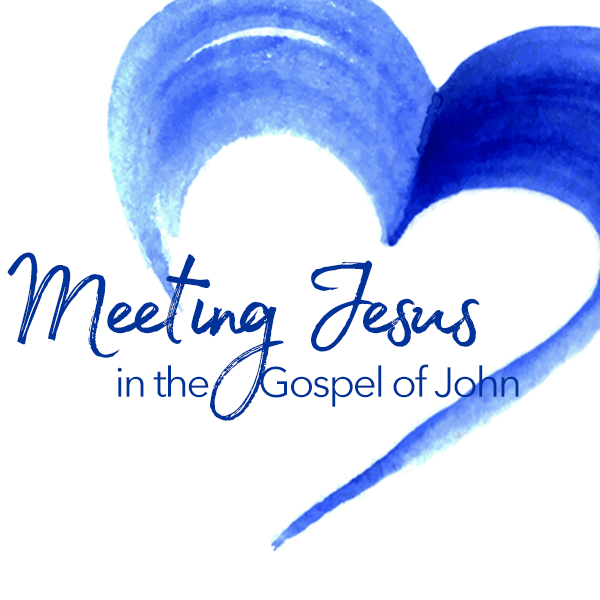 Meeting Jesus in the Gospel of John Logo